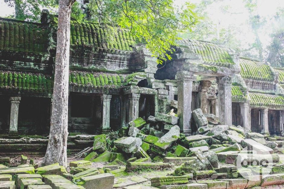 cambodia-2015-medres-15
