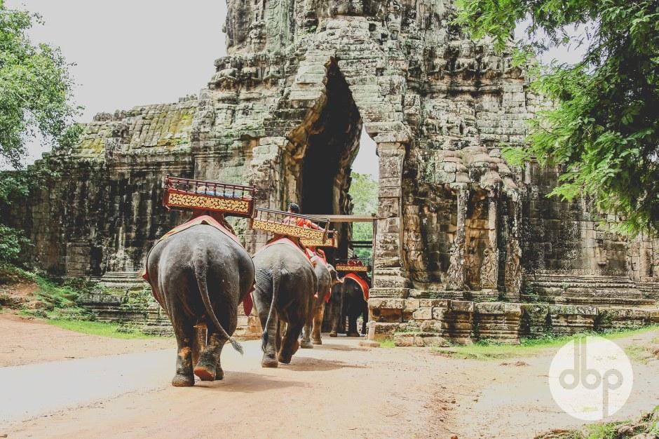 cambodia-2015-medres-20