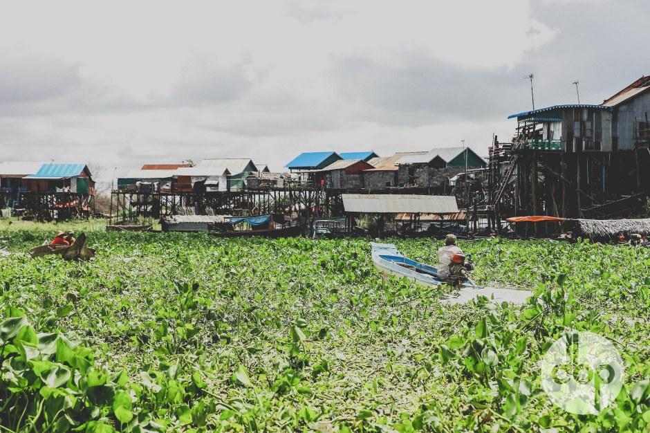cambodia-2015-medres-23