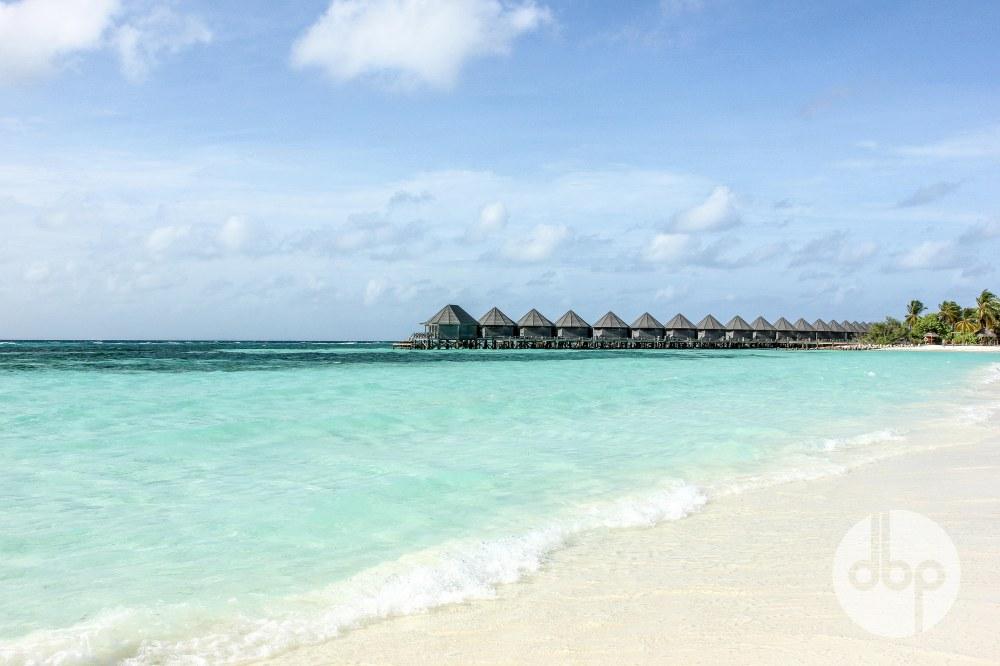maldives-medres-logo-42