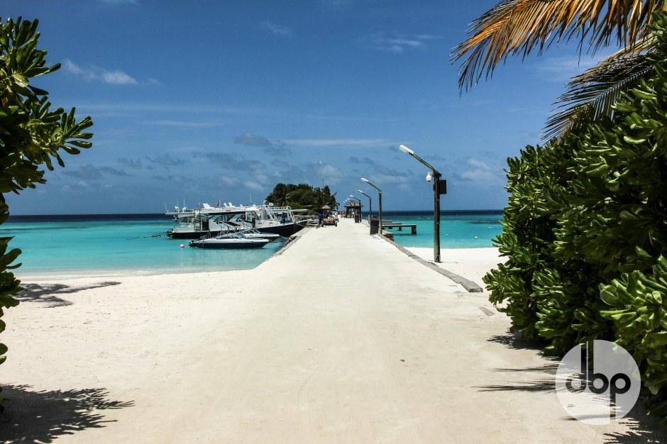 maldives-medres-logo-55